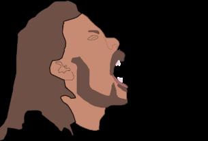 Hlavolamové přísloví - Akustické vlny