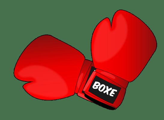Zebry kombinační hlavolamy - Boxeři